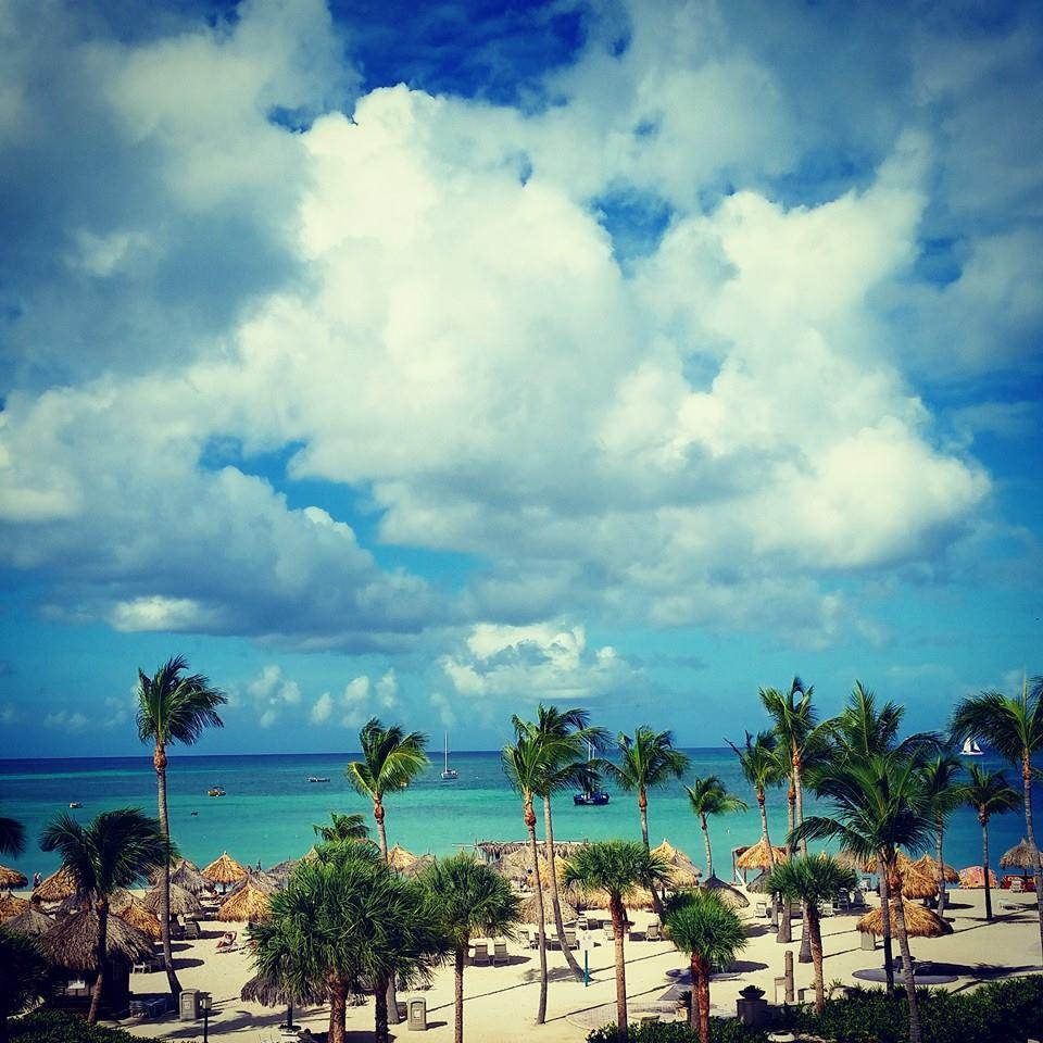 Marriott Ocean Club Views