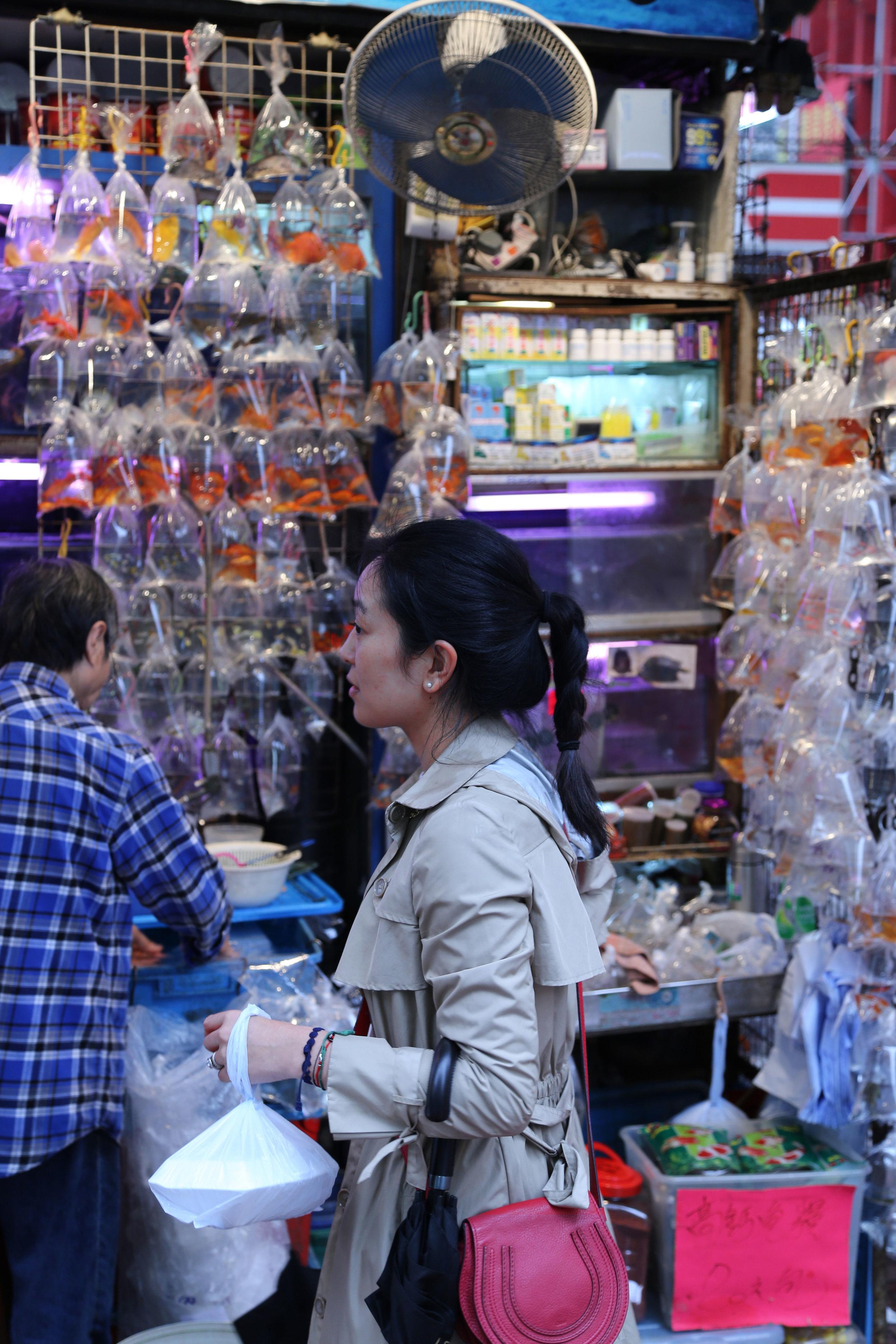 Goldfish Market Shopping