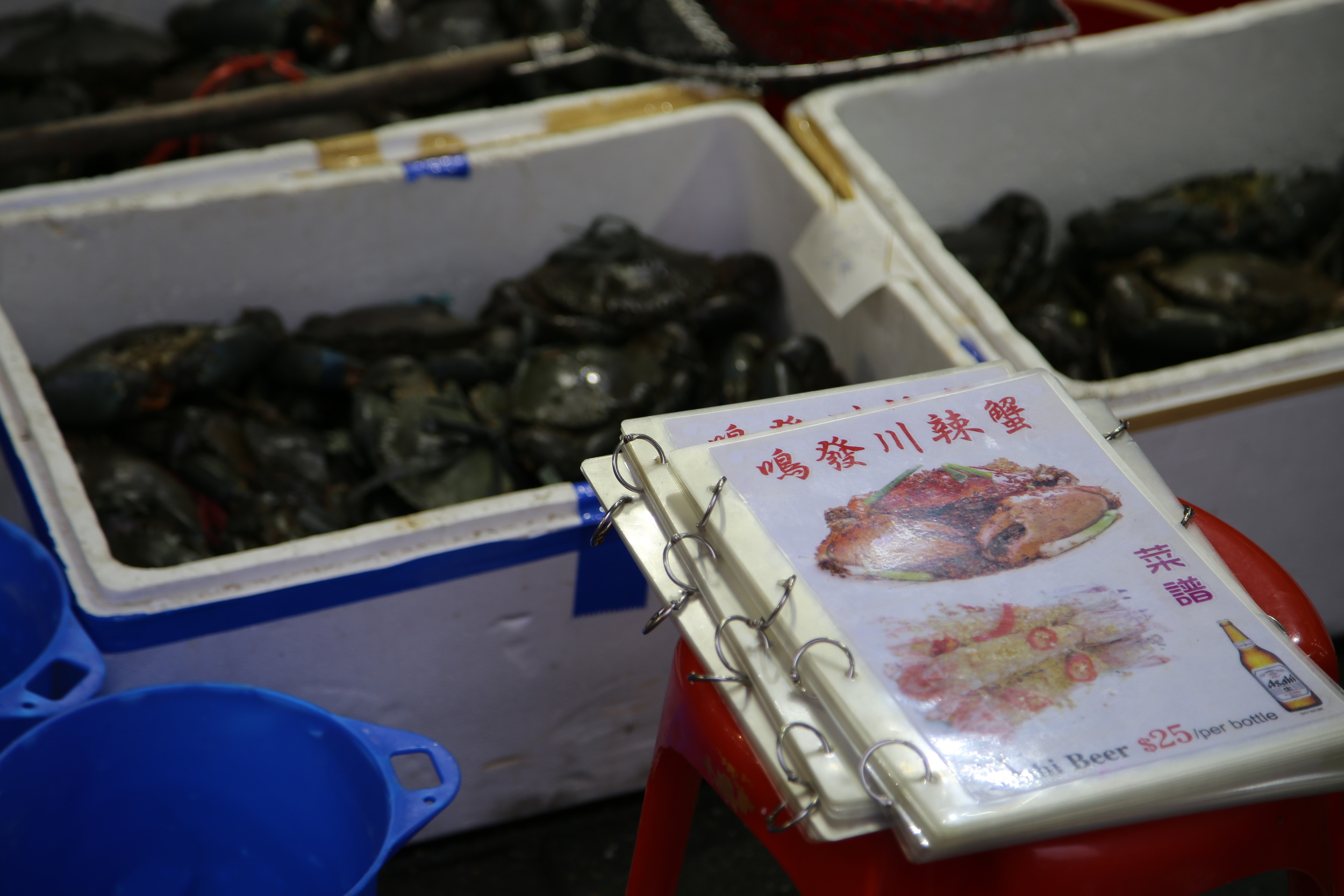 At the  Temple Street Night Market, you can pick your live seafood and they will cook it for you to eat.