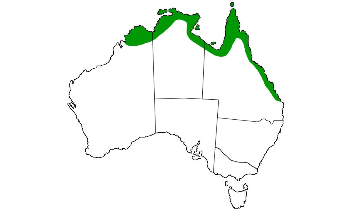Crocodylus-porosus-range.jpg