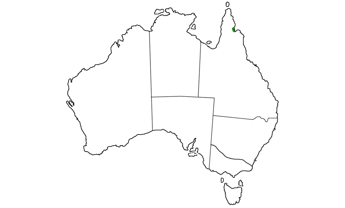 Morelia-viridis-range.jpg