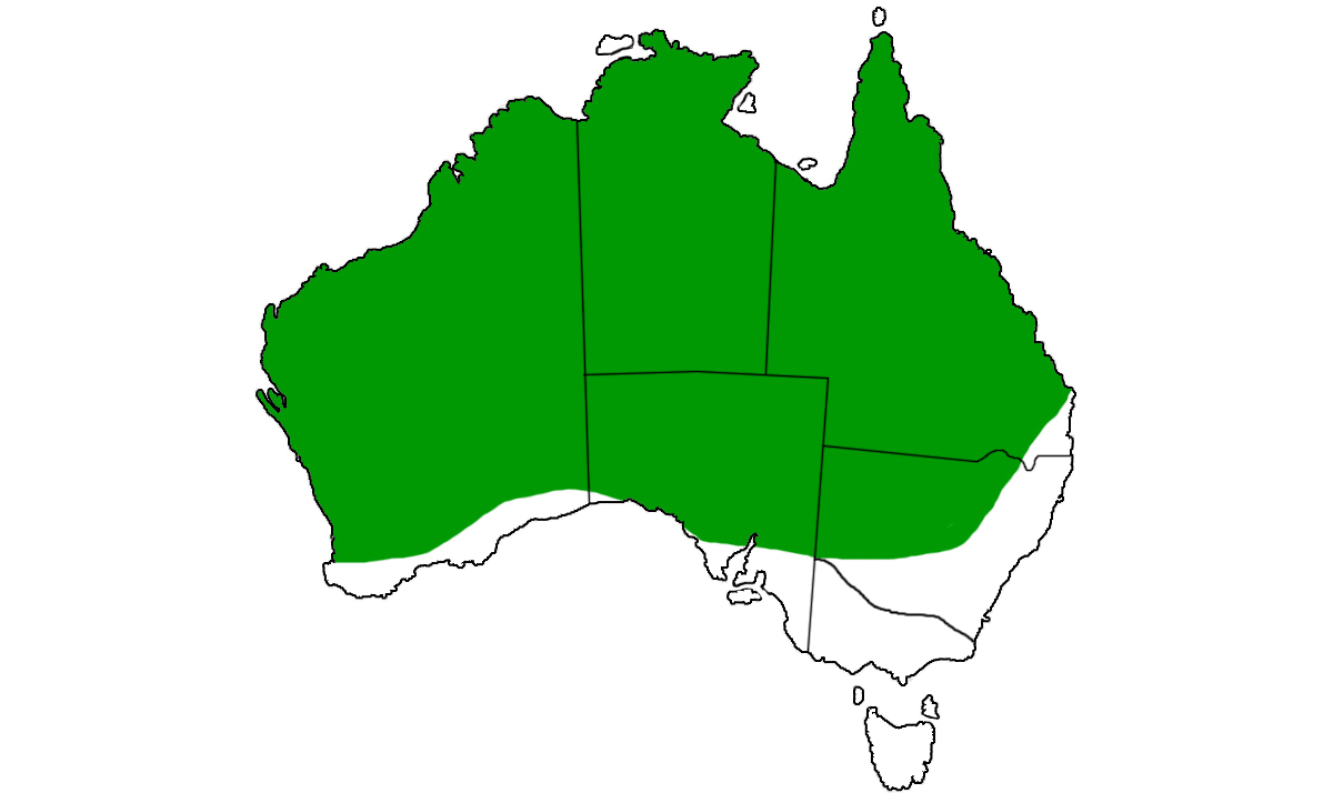 Pseudechis-australis-range.jpg