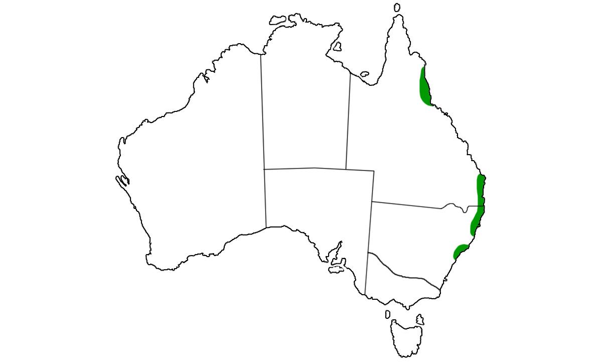 Tropidechis-carinatus-range.jpg