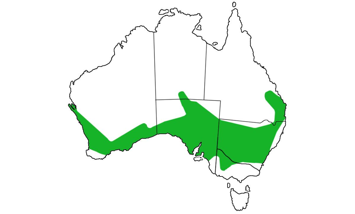 Underwoodisaurus-milii-range.jpg