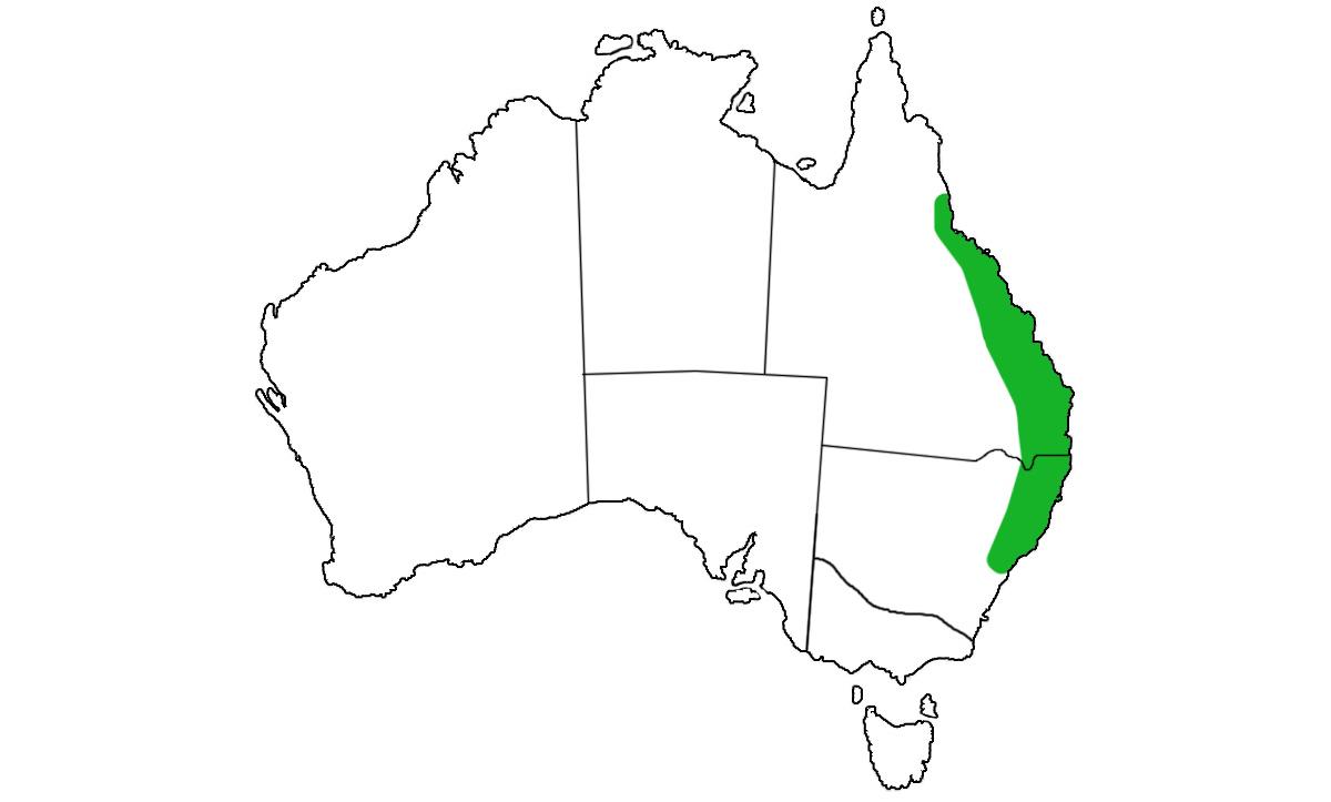 Cyclodomorphus-gerrardii-range.jpg