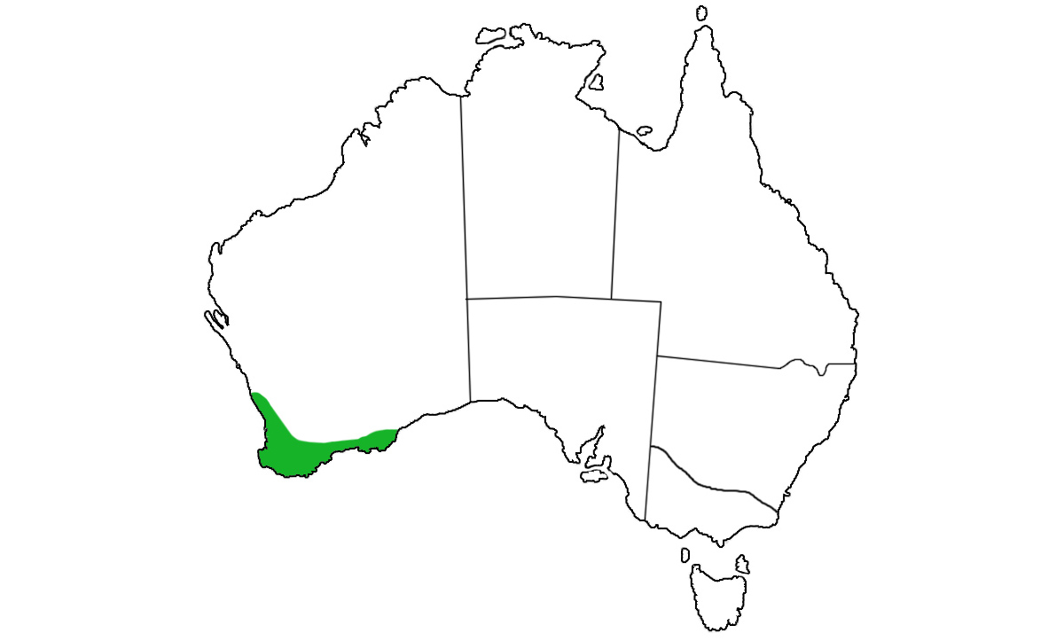Notechis-scutatus-occidentalis-range.jpg