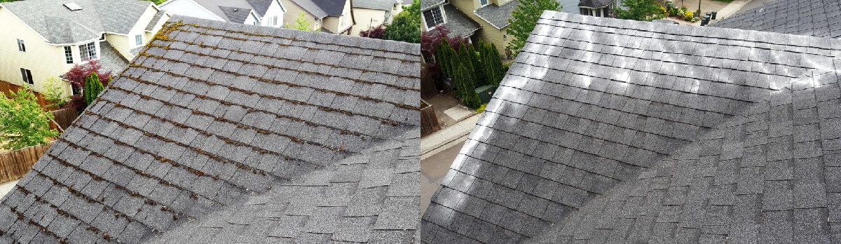 Before and after. The moss-covered roof is cleaned and zinc is applied to help prevent further growth.
