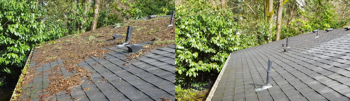 Before and after. Gutters that were previously filled with leaves are now clean, allowing proper roof drainage.