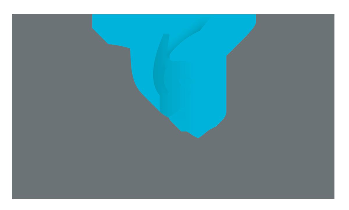 Hummingbird_Logo.png