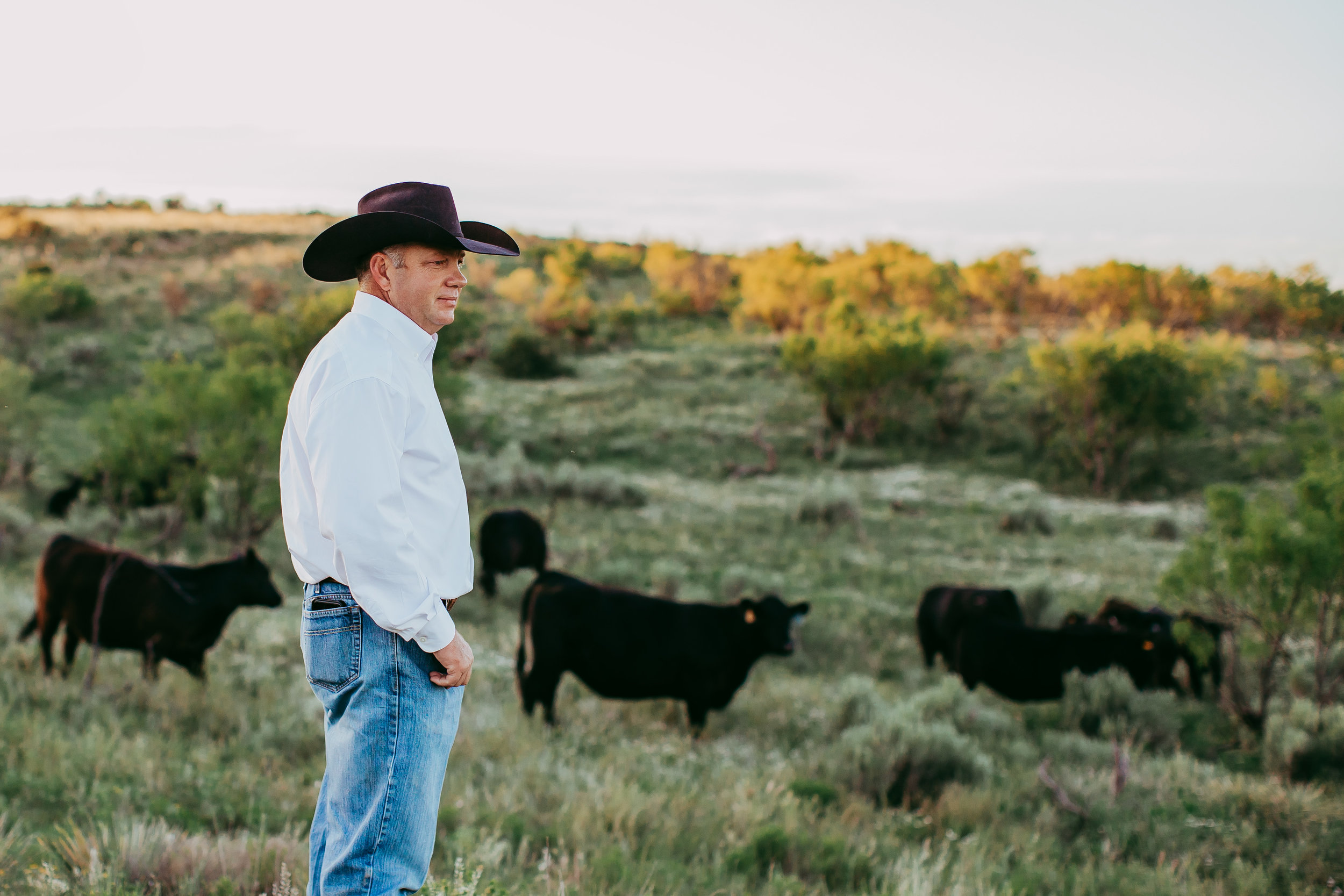 Dad hard at work looking over his cattle on his family ranch in black cowboy hat #tealawardphotography #texasfamilyphotographer #amarillophotographer #amarillofamilyphotographer #lifestylephotography #emotionalphotography #familyphotosoot #family #lovingsiblings #purejoy #familyphotos #familyphotographer #greatoutdoors