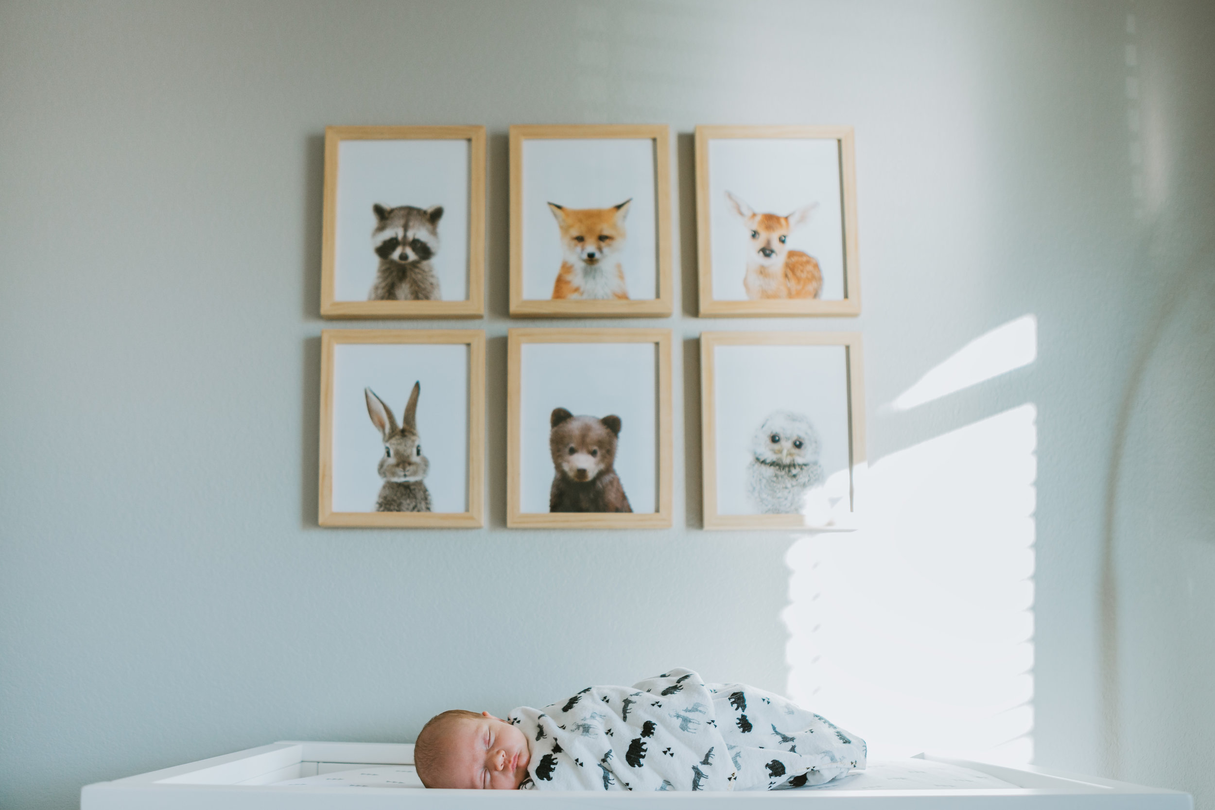 New baby boy on changing table with wall art on the wall of the nursery behind him #tealawardphotography #texasnewbornphotographysession #amarillophotographer #amarilloenewbornphotographer #emotionalphotography #lifestylephotography #inhomesession #lifestyles #newbaby #newfamilyofthree #sweetbaby #nurseryphotos