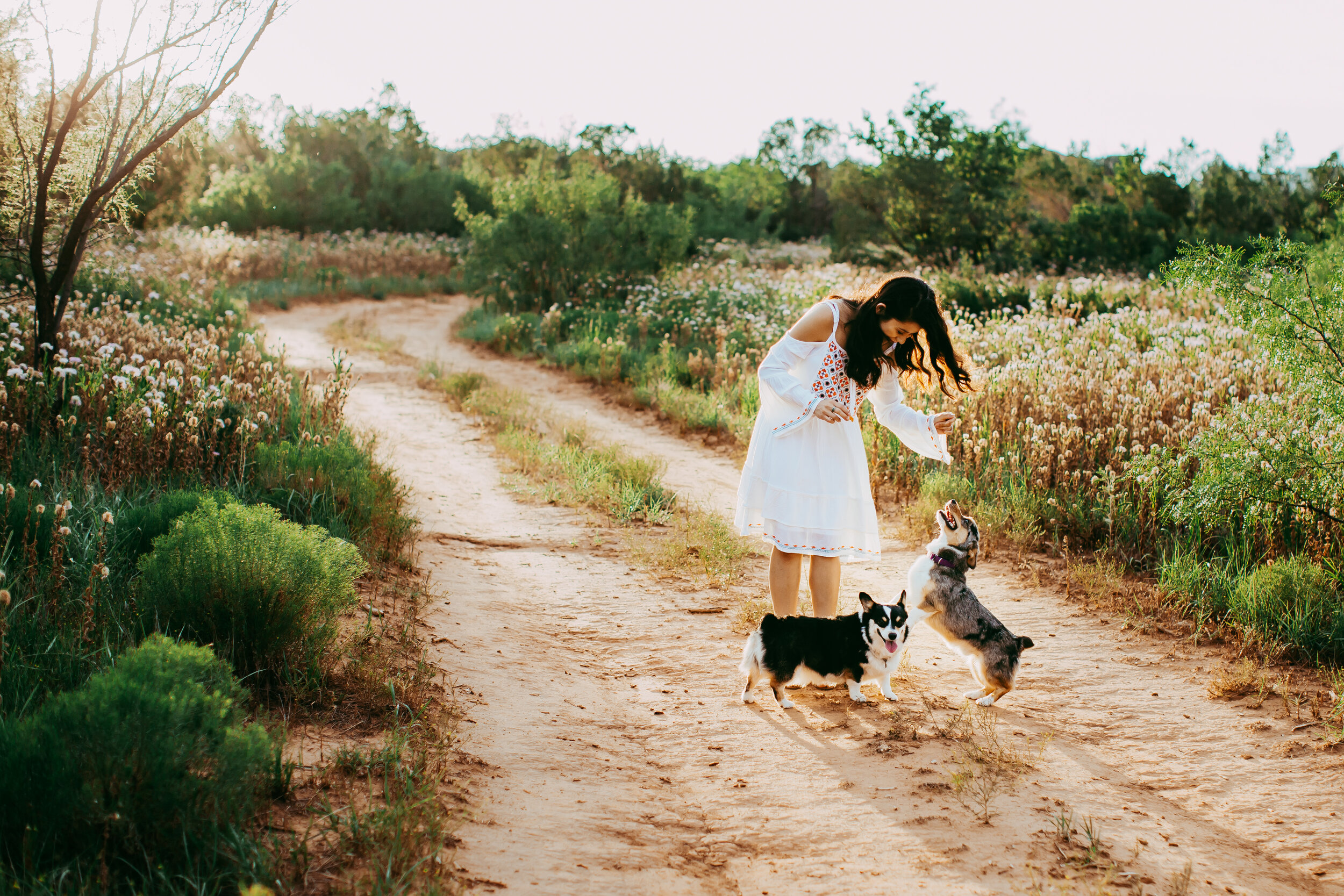 Playing with the puppies as they walked down a dirt path #tealawardphotography #texasphotographer #amarillophotography #amarillophotographer #lifestylephotography #emotionalphotography #photoshoot #family #puppylove #purejoy #puppyphotos #lifestyleinteraction