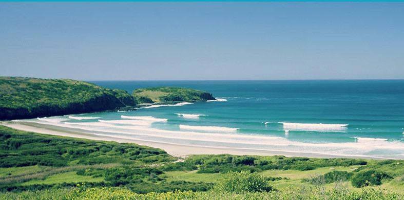 1341650-killalea-state-park.jpg