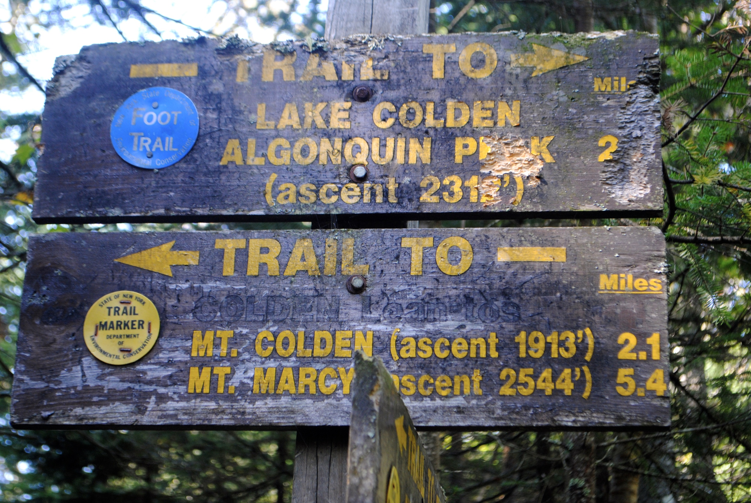 """""""Only 2 miles left until Mount Colden!"""" - Hold the excitement, we are going 1900 feet up!"""