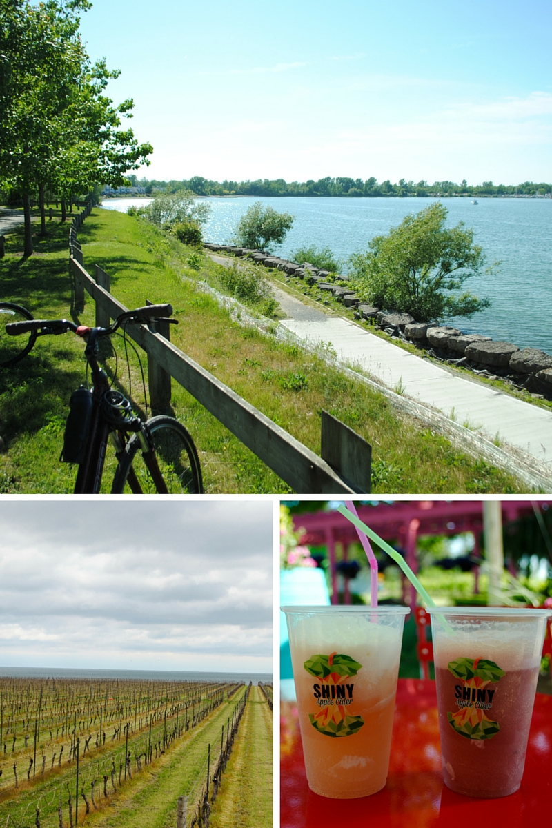 Bicycle adventures in Niagara-on-the-Lake - stumbled upon some Shiny Apple Cider floats at Small Talk vineyard, so delicious!