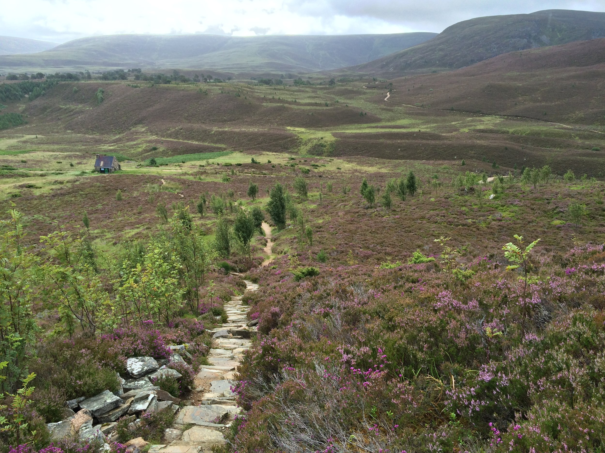 Hiking in Cairngorms National Park