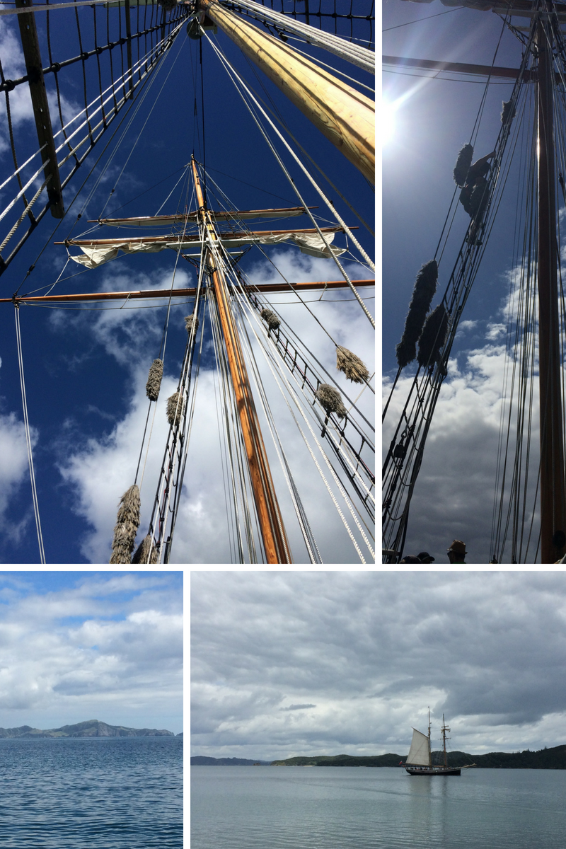 Lovely day on the Tucker Thompson tall ship, Bay of Islands