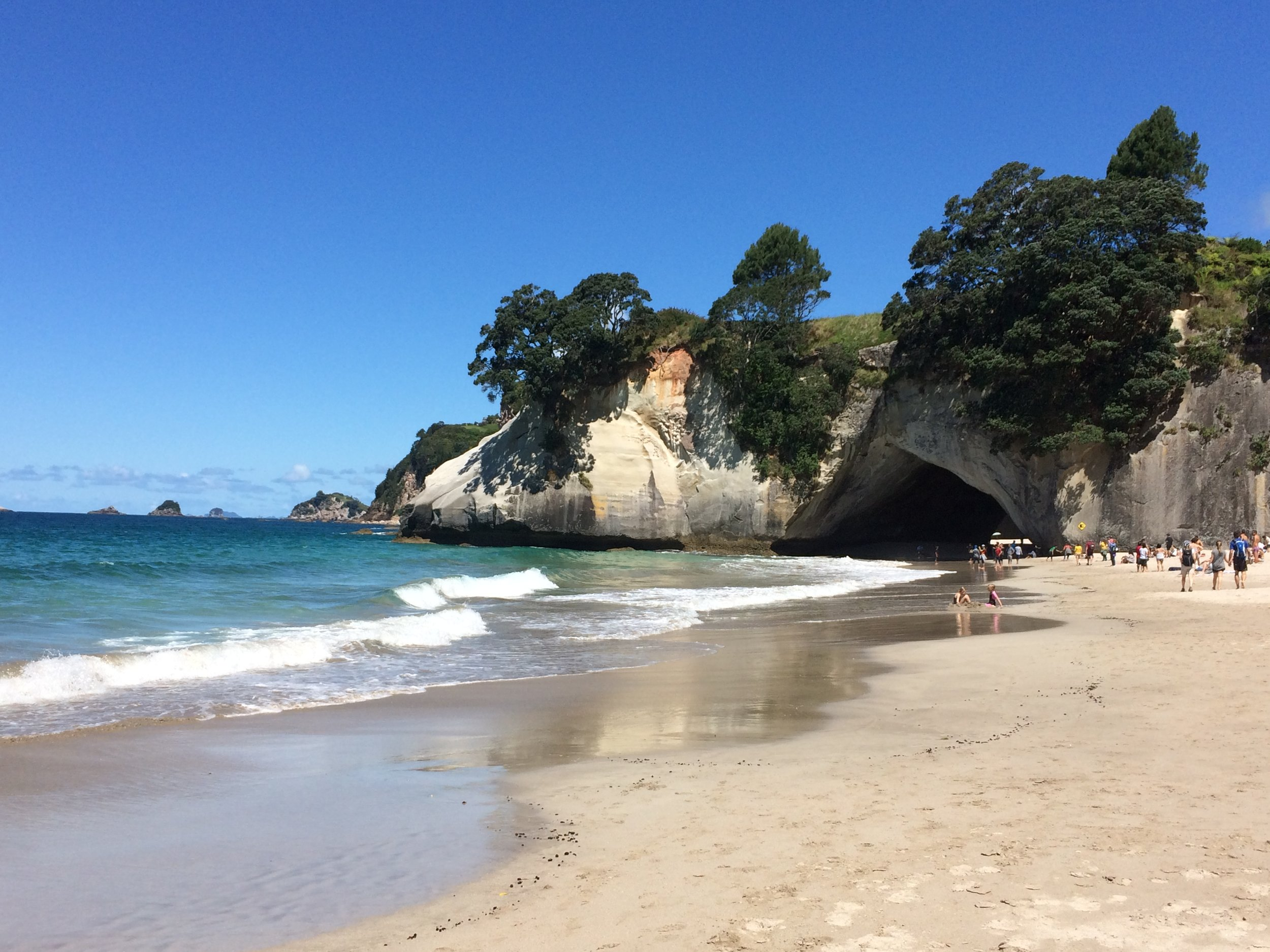 The not so secret beauty of Cathedral Cove, worth a couple hours of wandering.