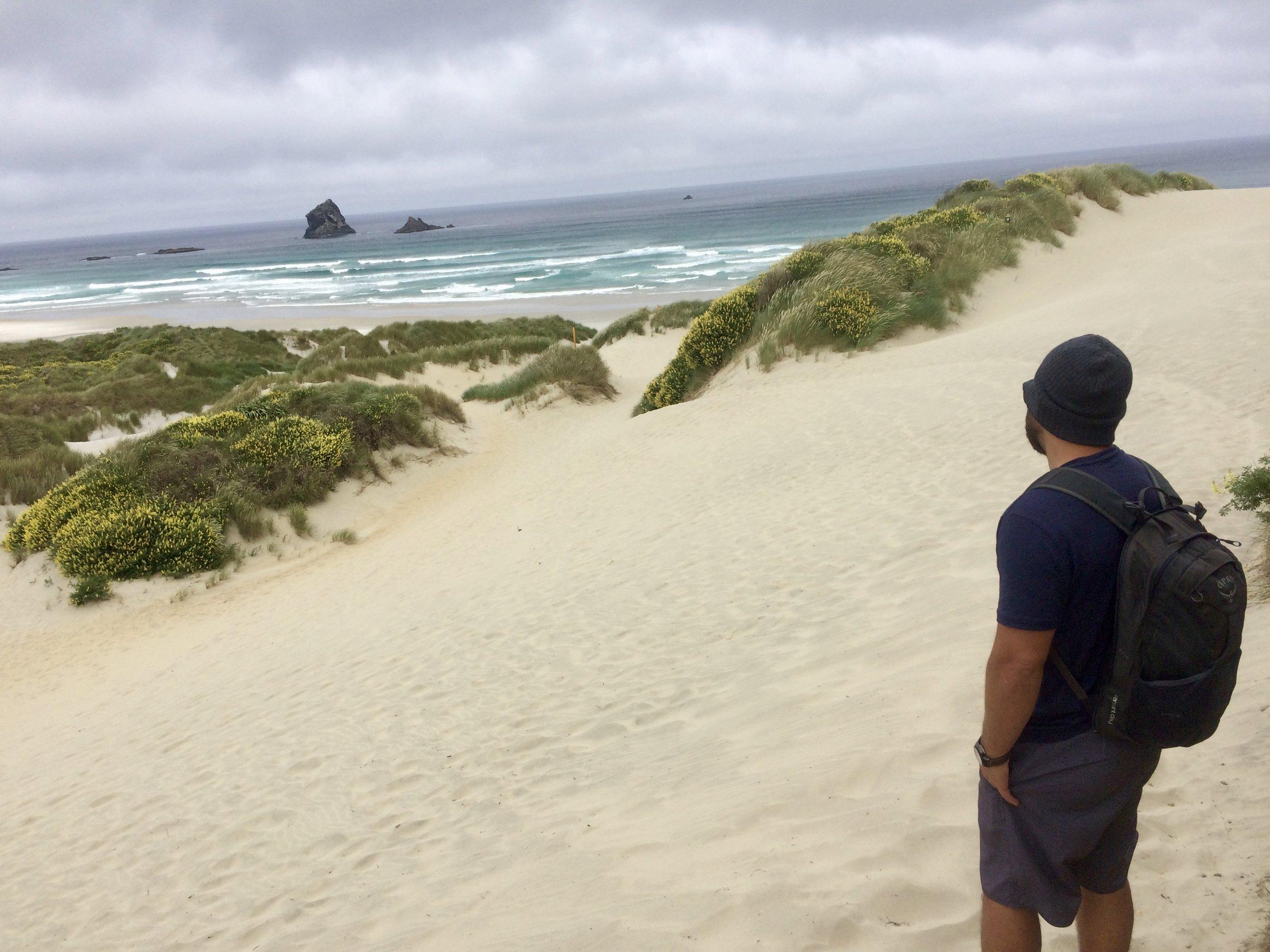 Sandyfly Beach near Dunedin