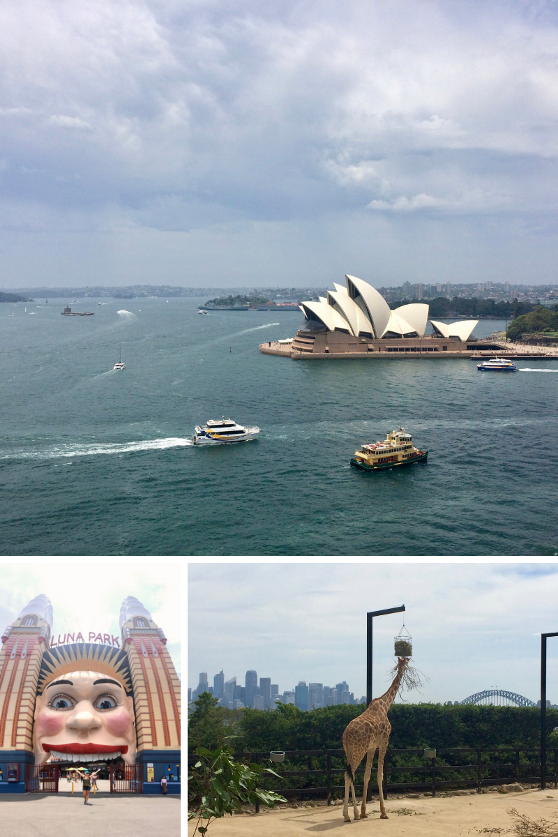 Exploring Sydney; view of the Opera House from the Harbour Bridge, Luna Park and the giraffe's sweet city views!