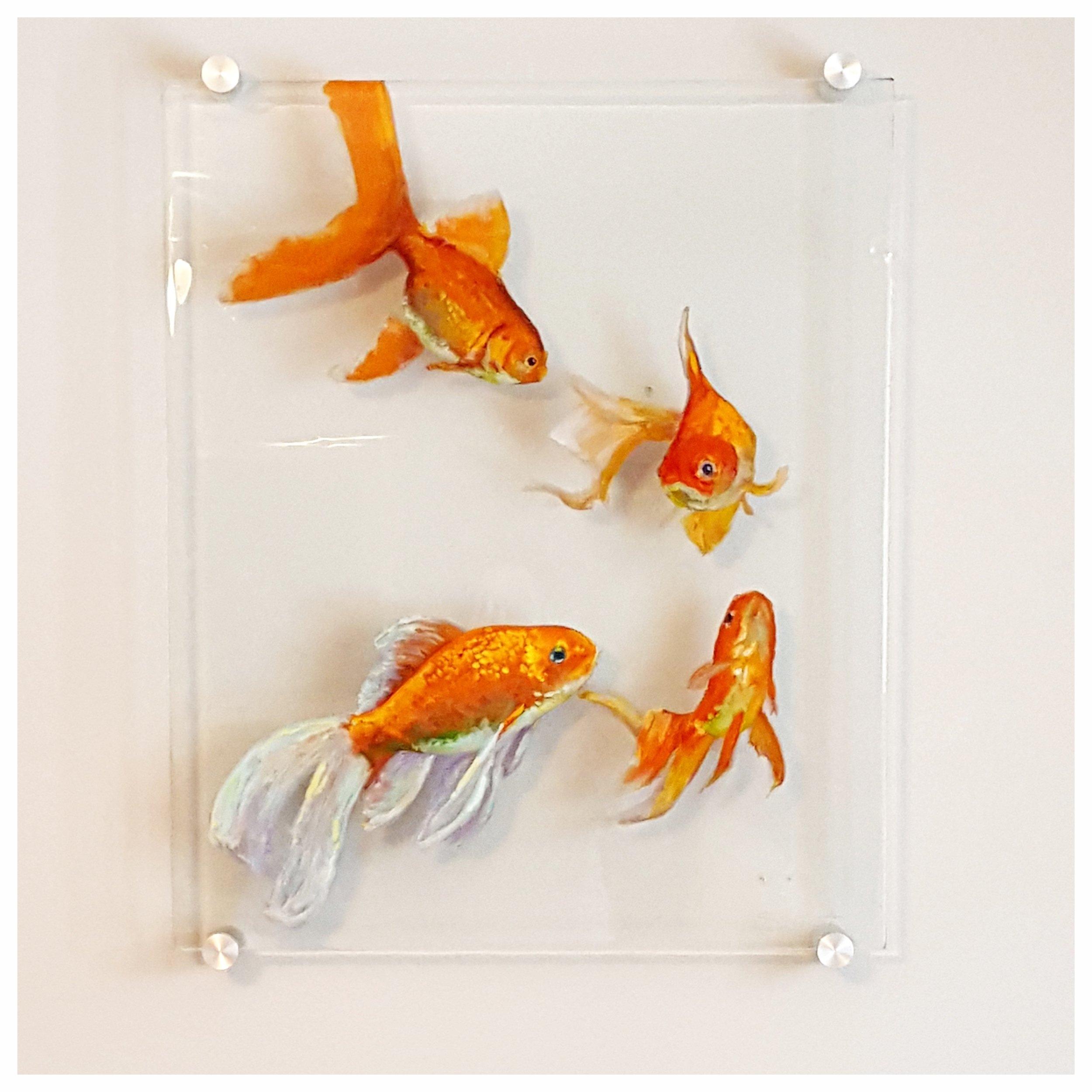 katie goldfish.JPG