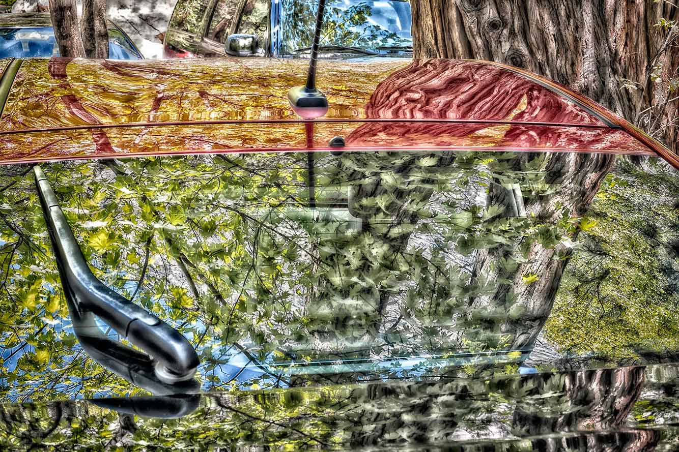 Orland_forest_reflections_no_1LR.jpg