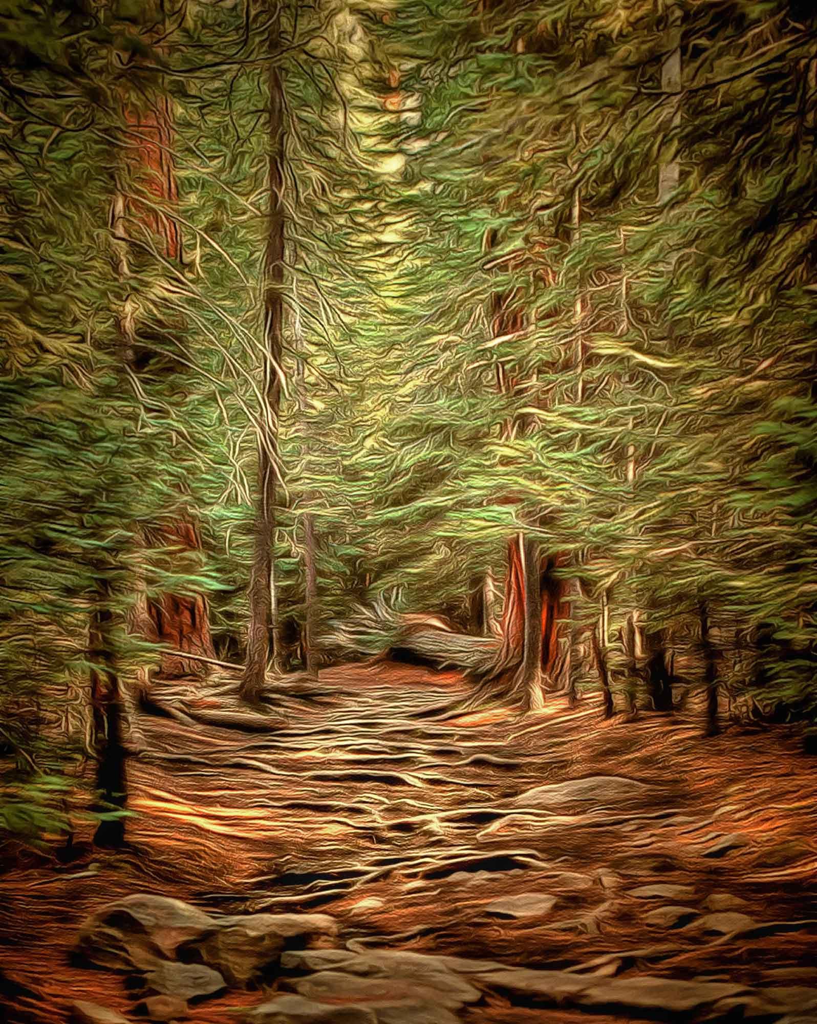 SmithG_enchanted_forest24x30LR.jpg