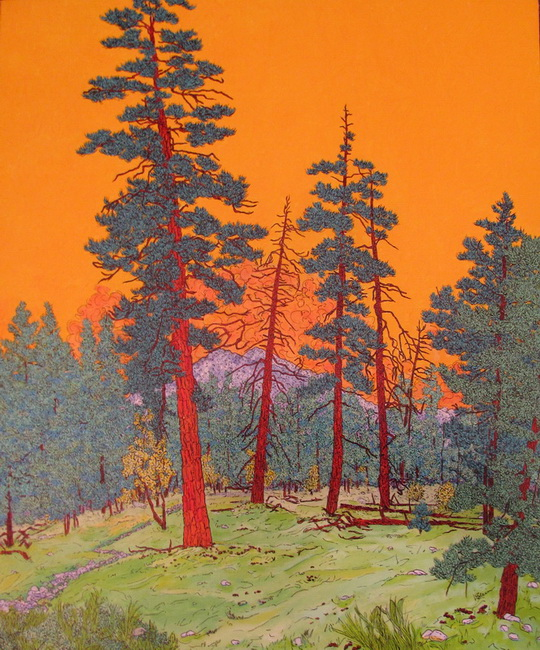 YR29--Klein, Susan J., Yosemite Free!.jpg