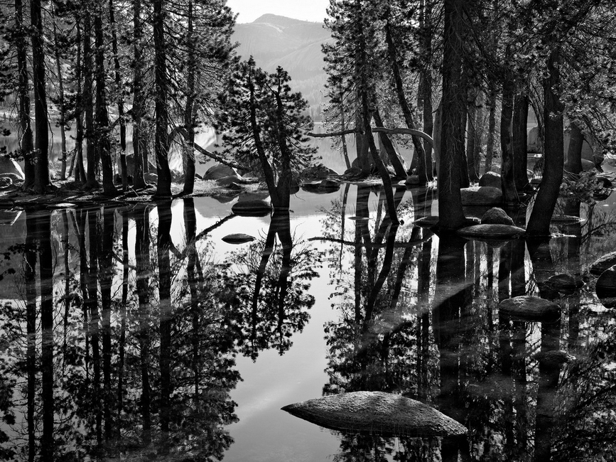 YR28--Mitchell, G Dan, Shoreline Reflections, Tenaya Lake.jpg