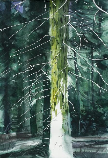 YR 26--Peper, Kate, Yosemite Moss.jpg