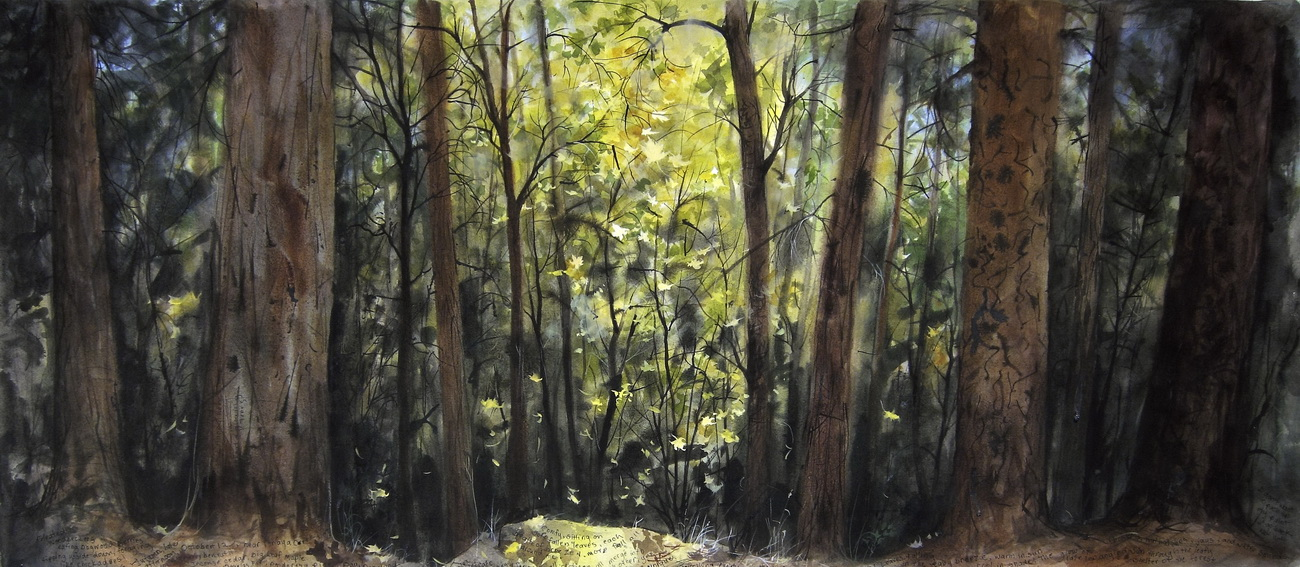 YR 26--Thrams, Andie, In Forests No. 26.jpg