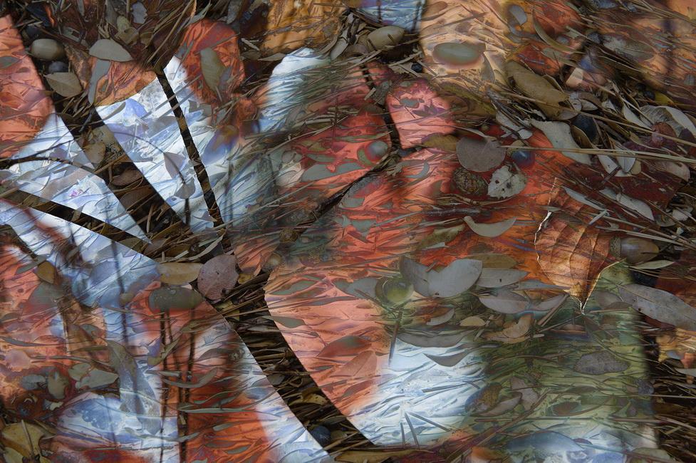 YR 25--Rosenfeld, Anne W, Autumn Blush.jpg