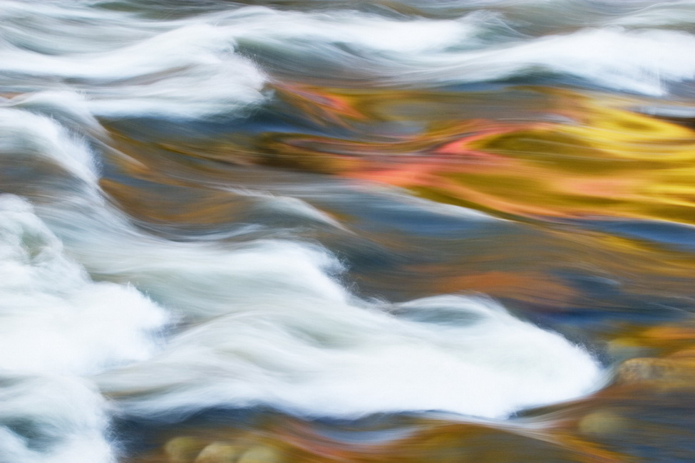 YR 23--Frye, Michael, Redbud Reflection in the Merced River.jpg