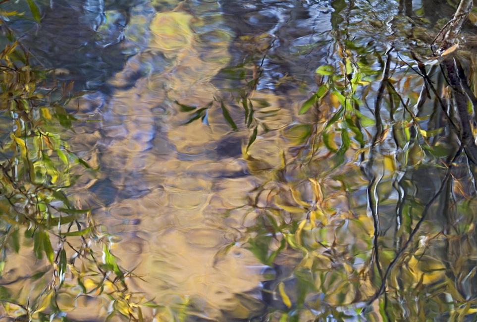 YR 23--Watts, Charlotte, Aspen Sun At Lundy Creek.jpg