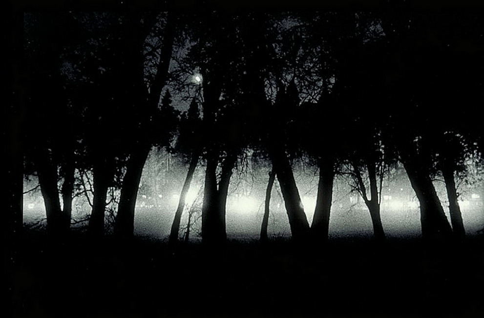 YR 15--Foy, Dana (Lights).jpg