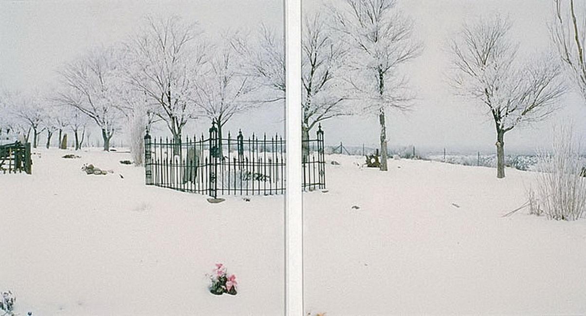 YR 14--Lee, David (Cemetery, detail).jpg