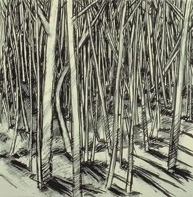 YR 11--Claes, John K.jpg