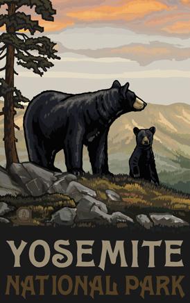 Yosemite Bear Poster.jpg