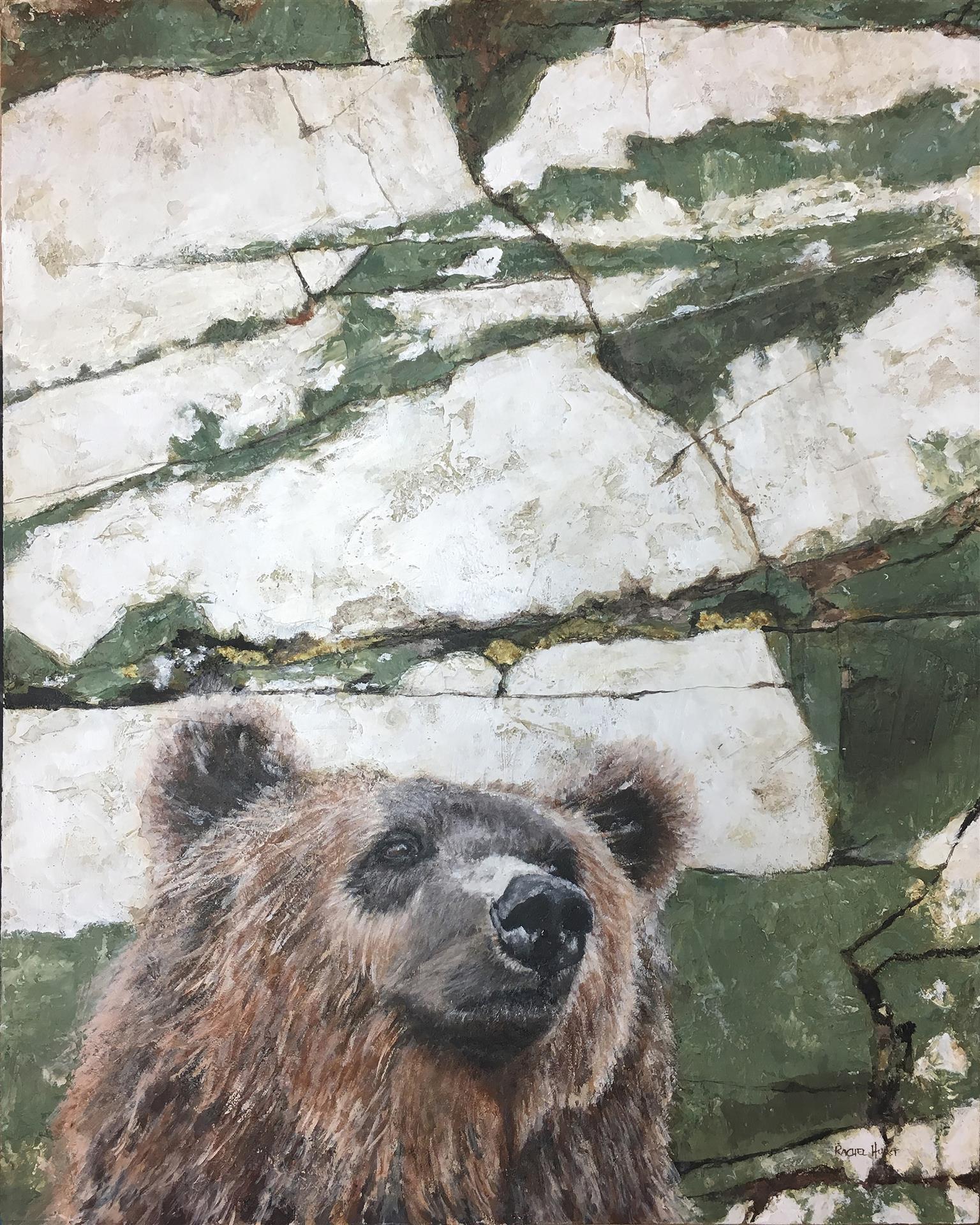 Hey Bear! Rachel Hurst