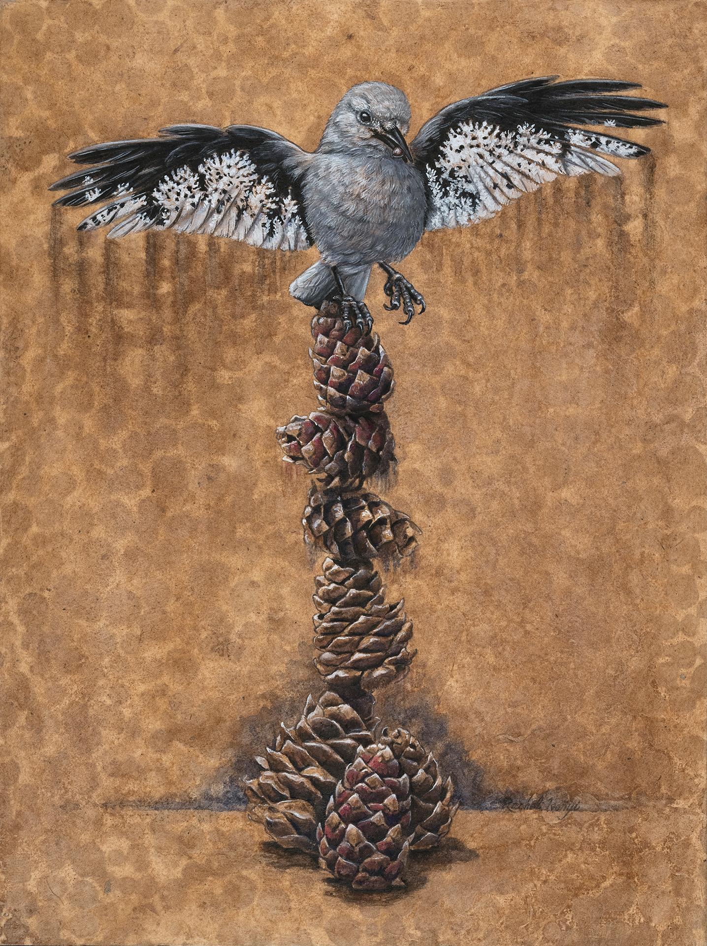 A Delicate Balance: Clark's Nutcracker and Whitebark Pine, Rachel Ivanyi
