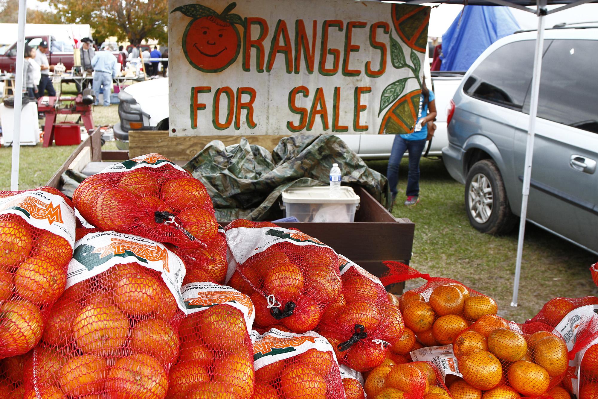 lapulga.oranges.jpg