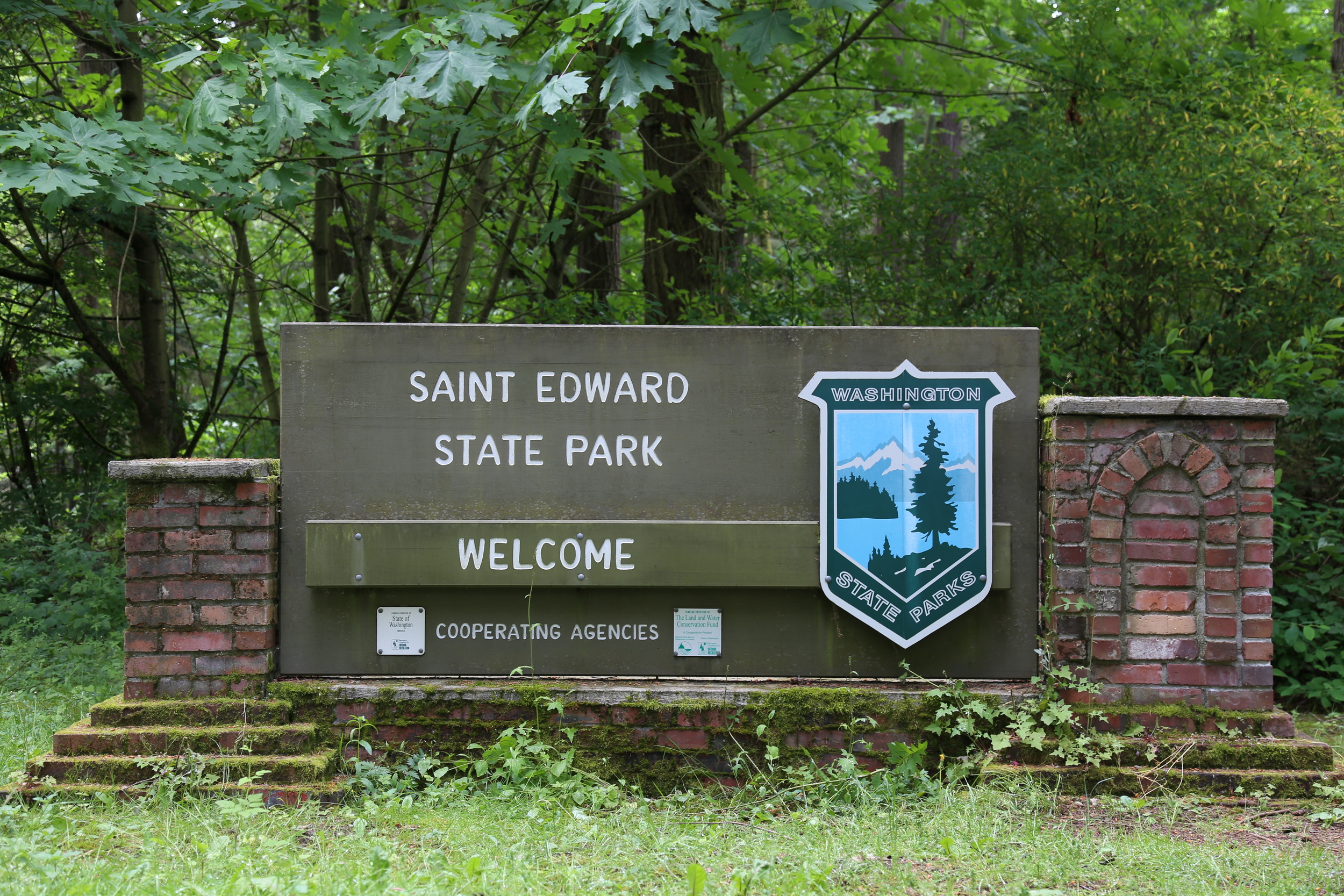 Welcome to Saint Edward Park!