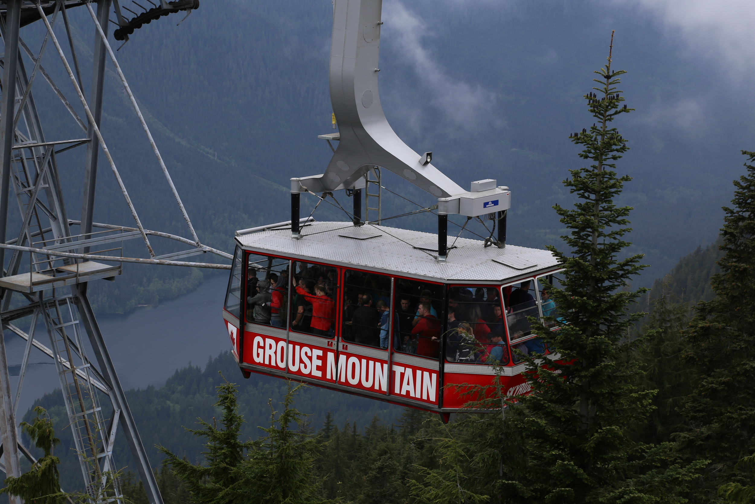 The best part is the gondola will take you down.