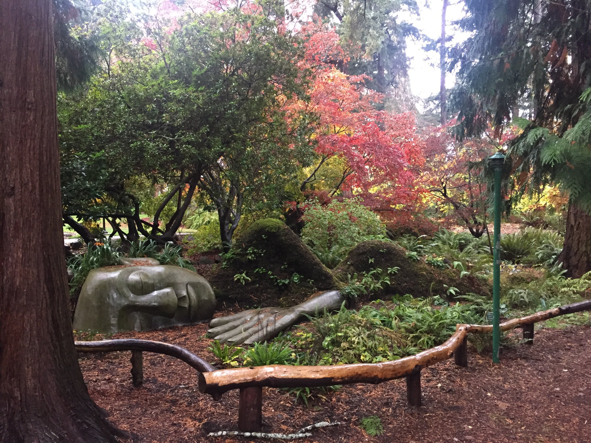 The sleeping moss lady at Beacon Hill Park