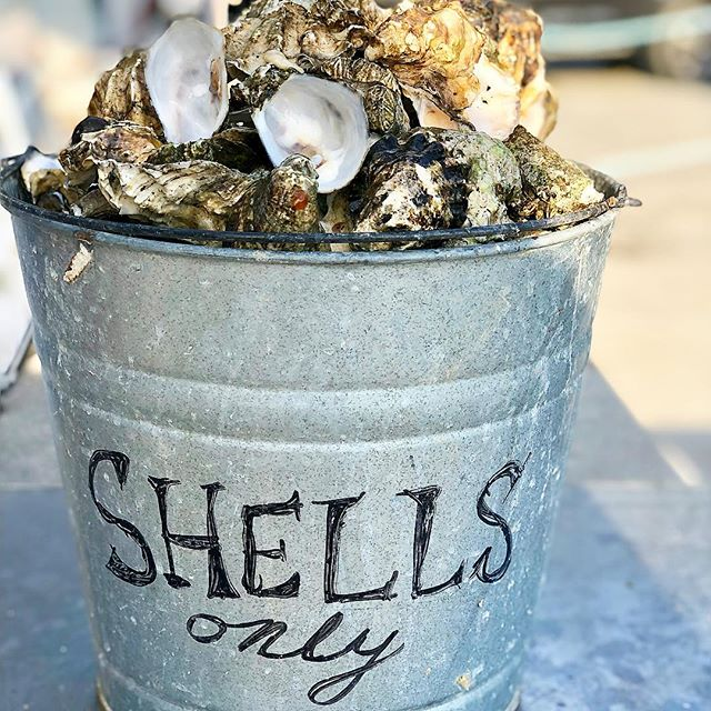 It's sunny again!!!! Who else is going to soak up some Vitamin D this weekend?? Head to Taylor Shellfish off Chuckanut Drive for an authentic oyster experience in the PNW! You can shuck and eat fresh oysters right on the water; grab some meats and cheeses and you're set for the world's best picnic.