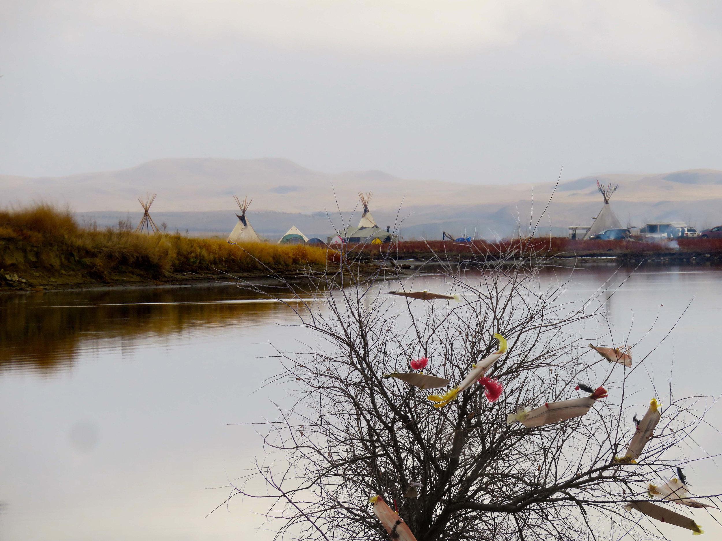 08_ Standing Rock Treeboats 2016.jpg