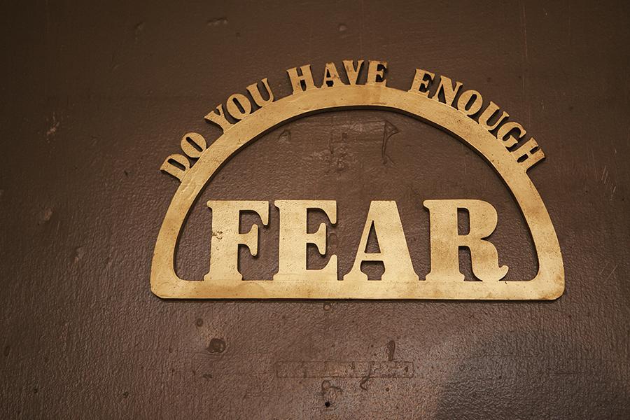 """Do You Have Enough Fear""  15"" x 9"""