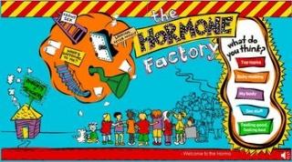 thehormonefactory.jpg