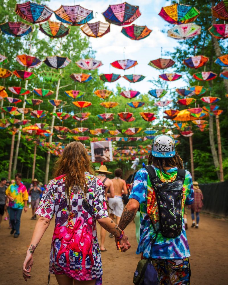Photo Credit - Electric Forest : Entering the Forest.