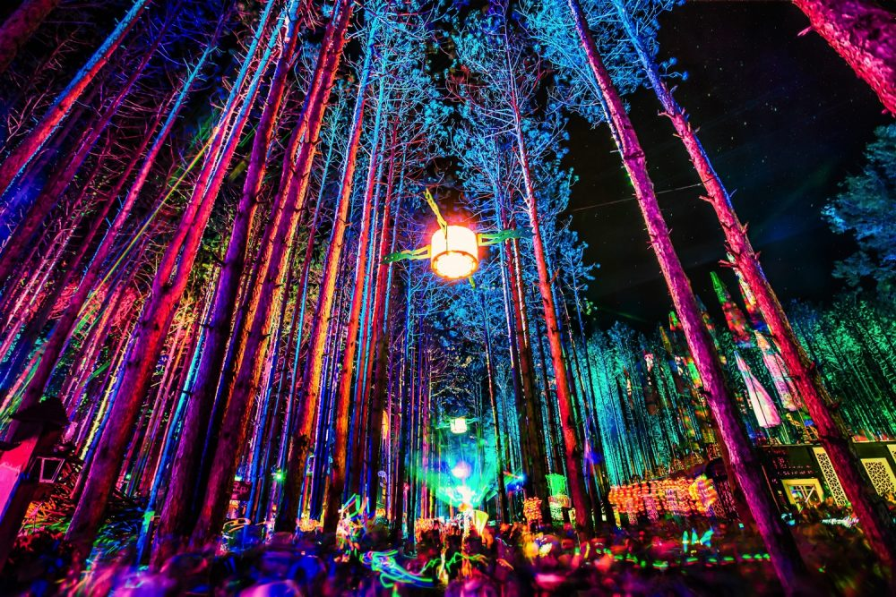 Photo Credit - Electric Forest -  The Forest